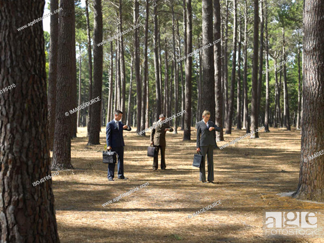 Stock Photo: Office workers in forest.