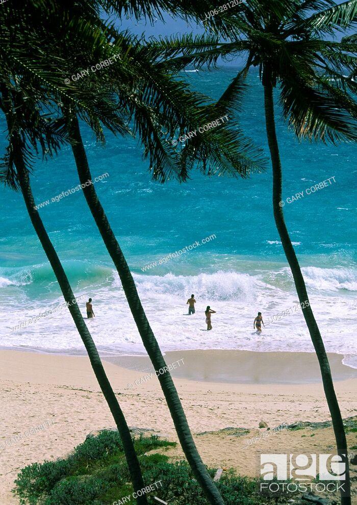 Stock Photo: bottom bay in barbados.