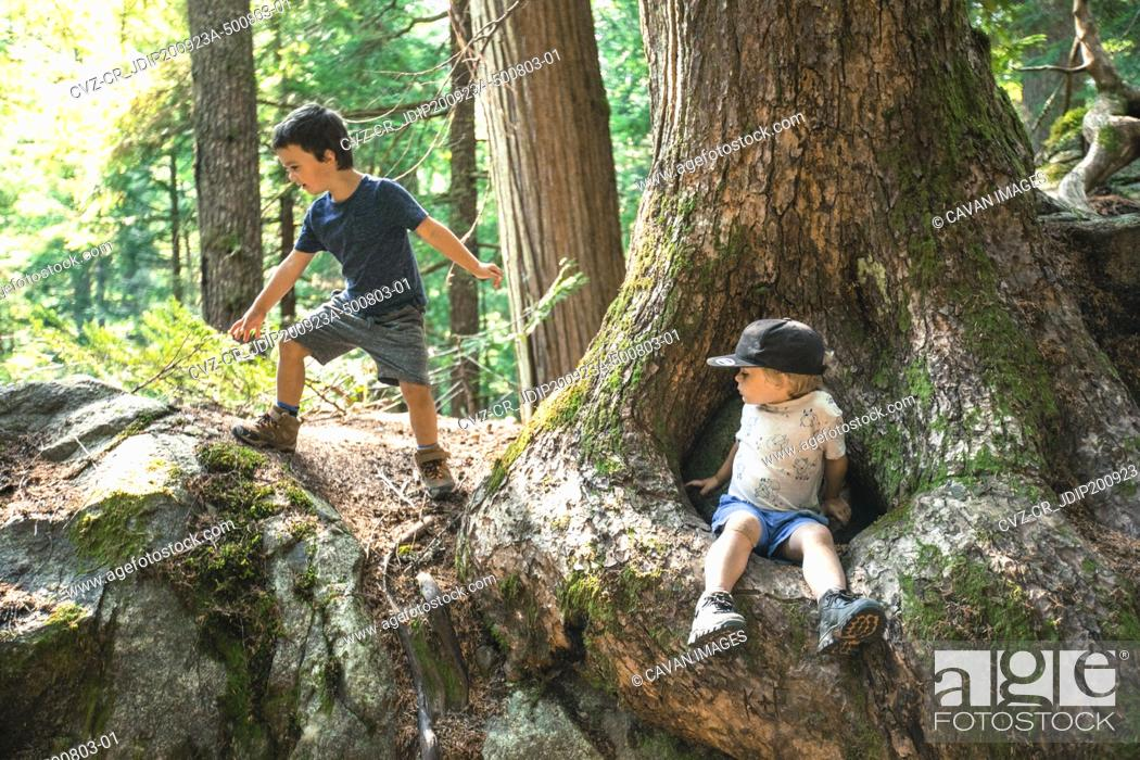 Photo de stock: Two young boys playing in nature, lush forest setting.
