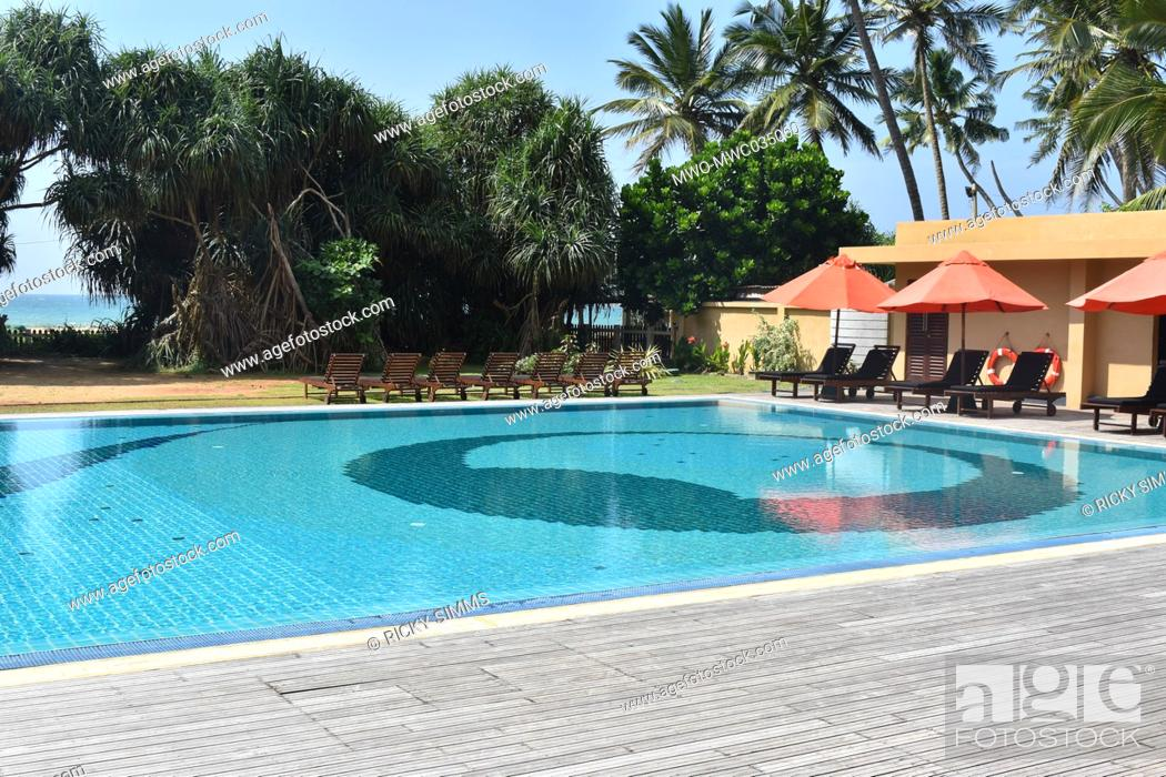 Imagen: A pool without any human activity. Hotels do not allow people to use the pool due to the Coronavirus pandemic. Colombo, Sri Lanka.