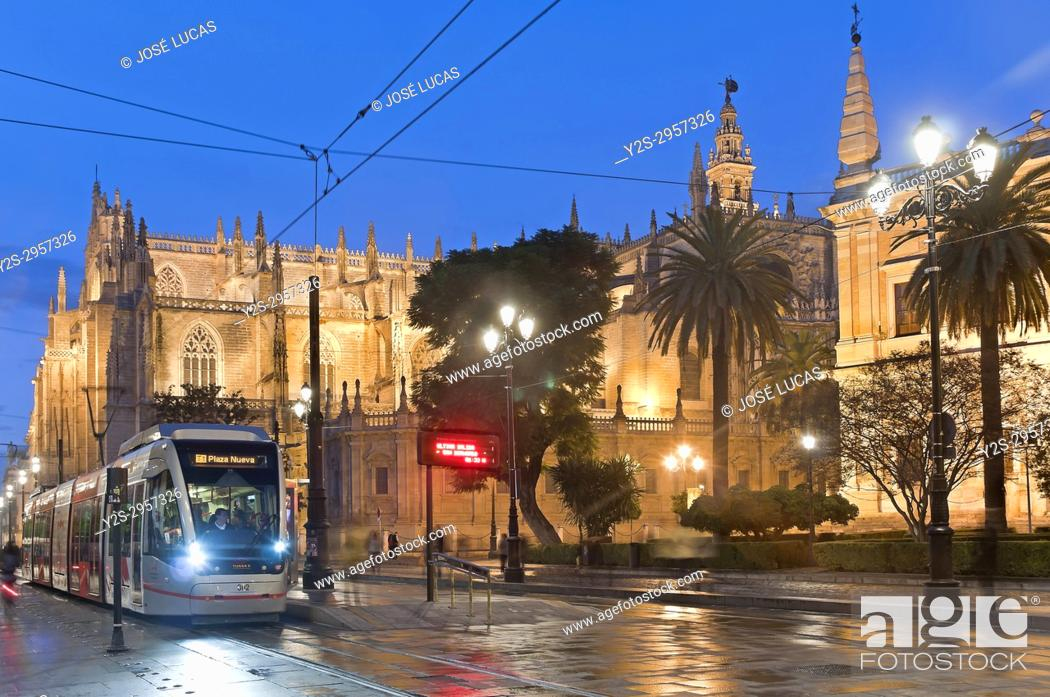 Stock Photo: Avenue of the Constitution - Cathedral and Metrocentro tram, Seville, Region of Andalusia, Spain, Europe.