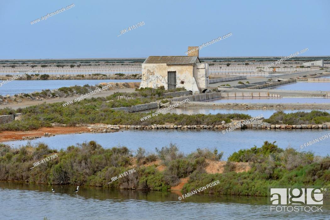 Stock Photo: Ses Salines saltworks, near Sant Francesc d'Estany, Ibiza, Balearic Islands, Spain.