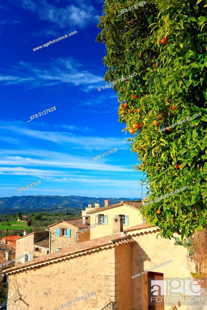 Stock Photo: Village de Chateauneuf de Grasse, Arriere pays Grassois, 06, Alpes-Maritimes, PACA, .