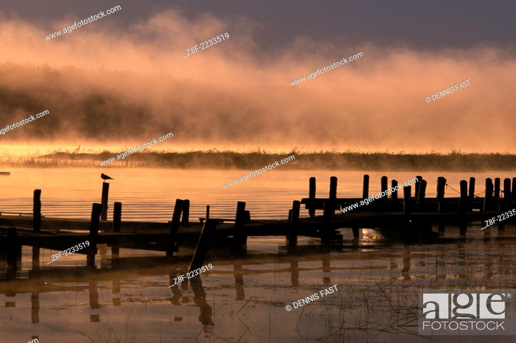 Sunrise mist and boat dock over Lake of the Woods near
