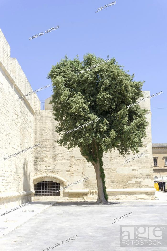 Stock Photo: Cityscape in Lecce on July 13, 2018 Puglia Italy Charles V castle.