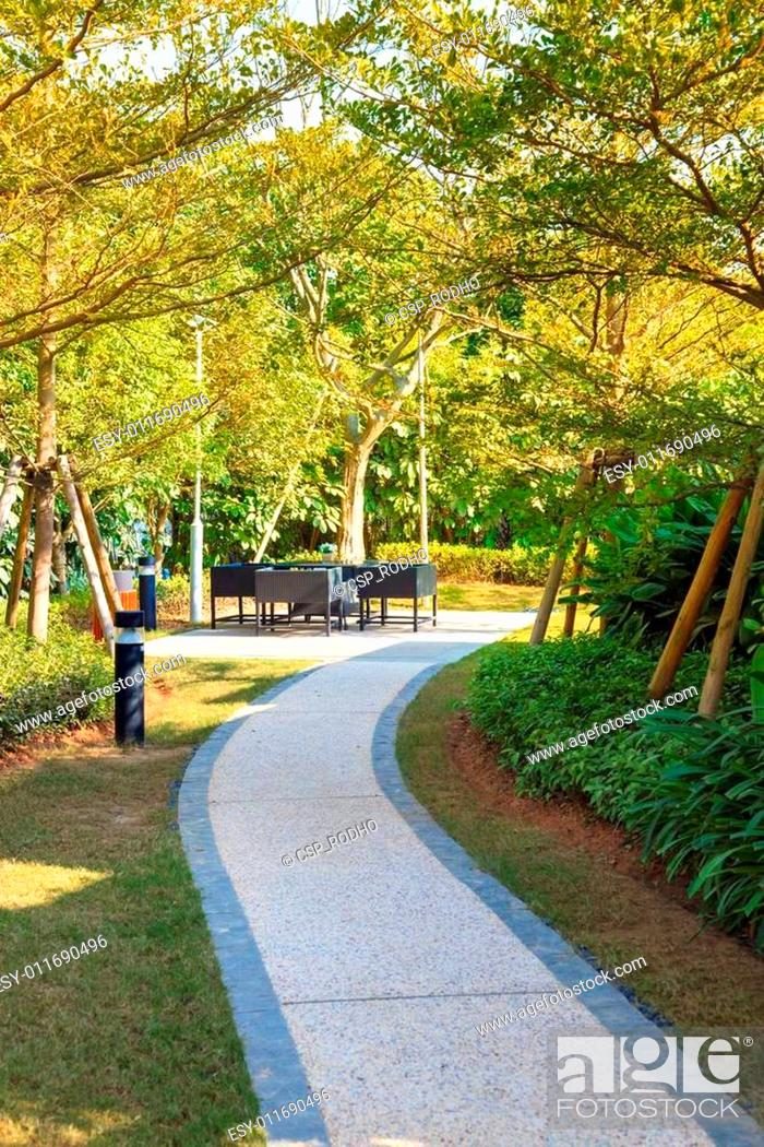 Stock Photo: Tranquil Garden with footpath through.
