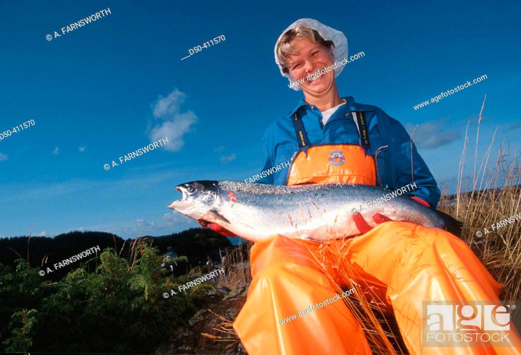 Stock Photo: Salmon fishery. Woman holding a Norwegian salmon. Bremnes. Norway.
