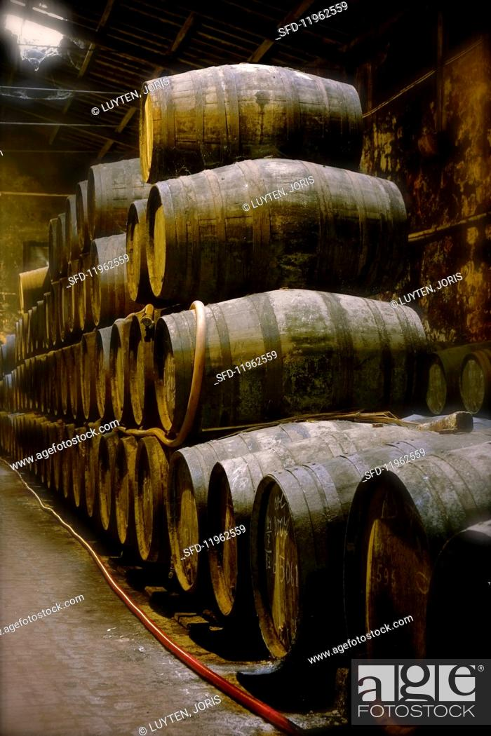 Stock Photo: Port wine in a wooden barrels in the Niepoort winery, Portugal.