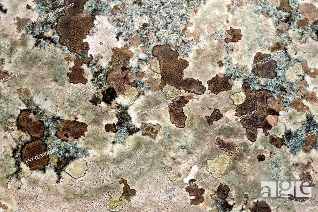 Stock Photo: Granite mottled brown.