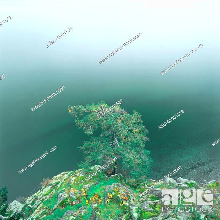 Stock Photo: Canada, British Columbia, Gibsons, Sunshine Coast, lake, rocks, tree, abandoned, autumn,.