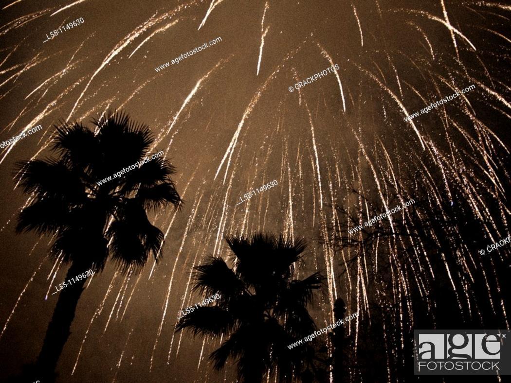 Stock Photo: Midnight fireworks in the Turia park (Valencia, Spain).
