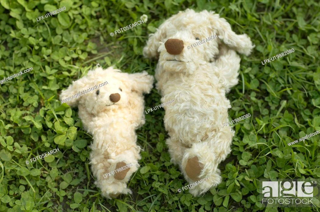 Stock Photo: Two soft toy dogs lying on grass.