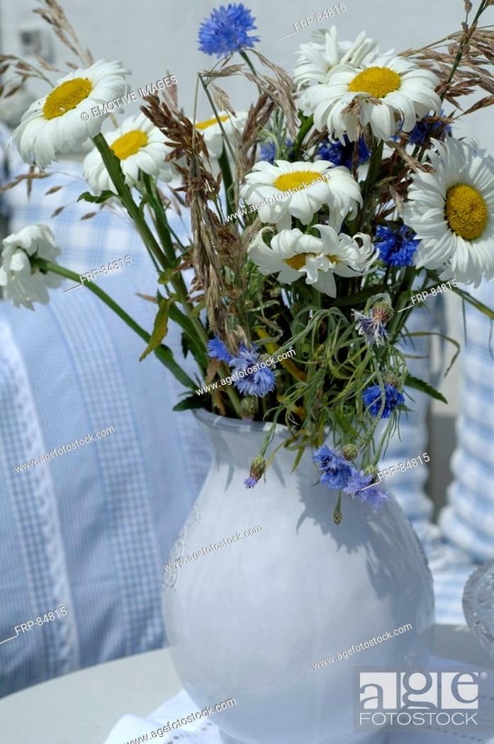 Stock Photo: Bunch of Marguerites and corn flowers.