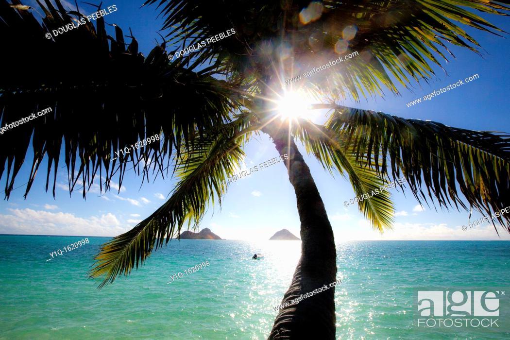 Stock Photo: Mokulua Islands, Lanaikai, Oahu, Hawaii.