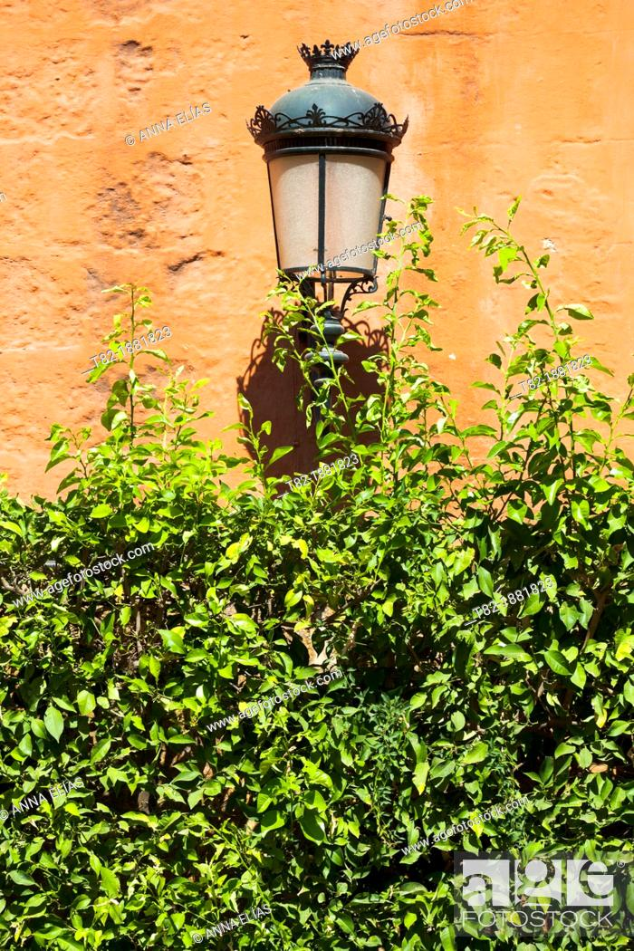 Stock Photo: iron lamppost on the ivy wall orange, Seville, Alcazar, Andalucia, Spain, Europe.