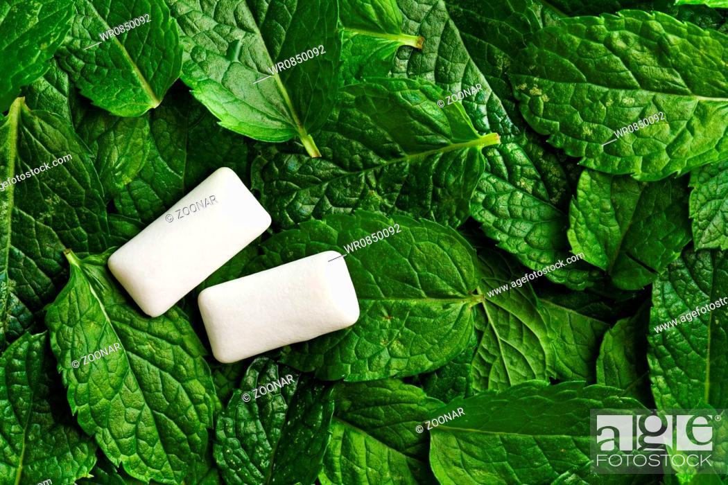 Stock Photo: mint leaves and chewing gum.