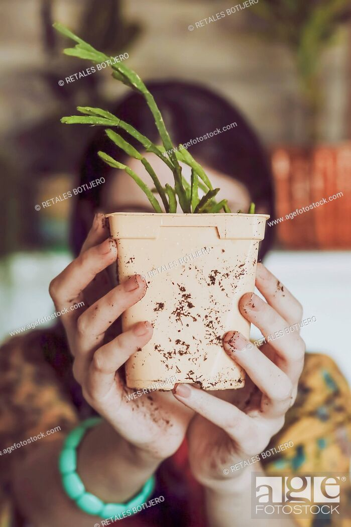 Stock Photo: Young woman holding freshly potted cactus.