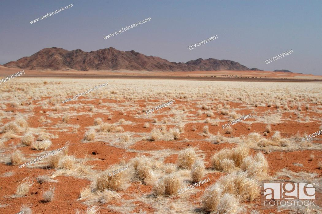 Stock Photo: Landscape in Namibia.