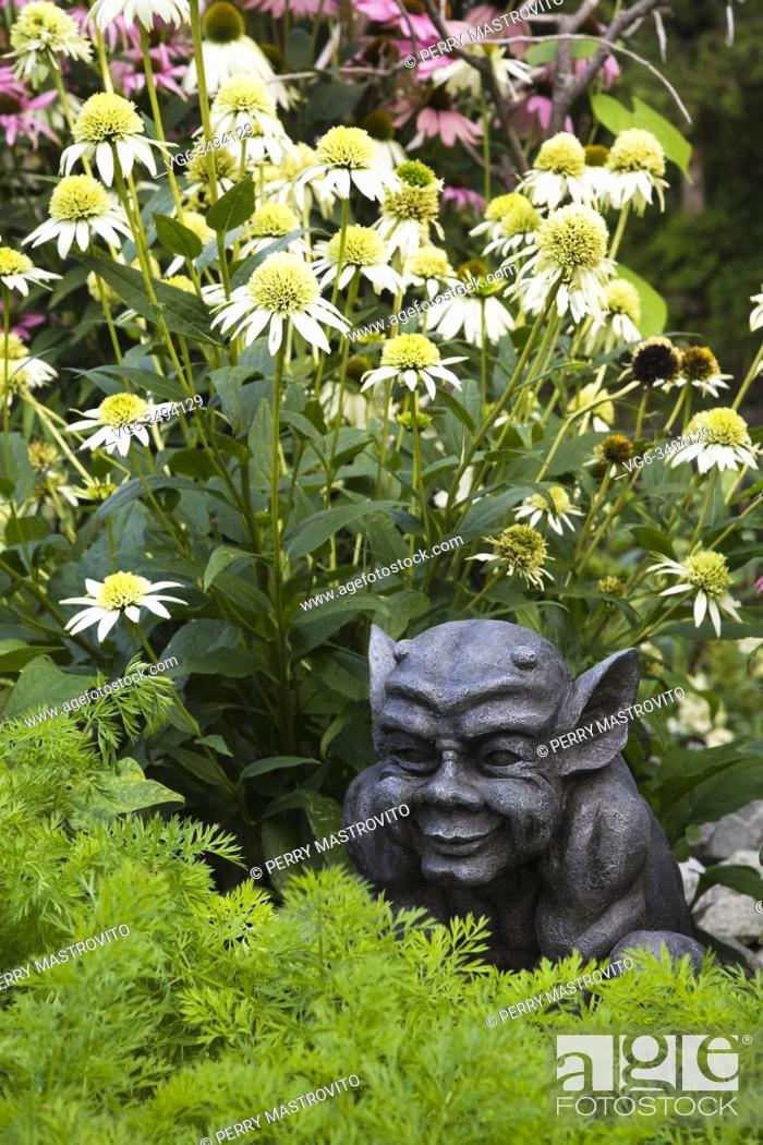 Stock Photo: Close-up of dark grey gargoyle sculpture and Echinacea 'White Lustre' - Coneflowers in garden border in front yard country garden in summer.