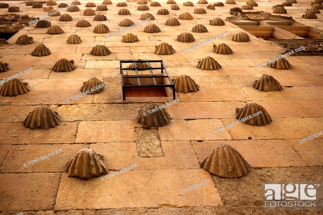 Imagen: Casa de las Conchas shell house in Salamanca of Spain.