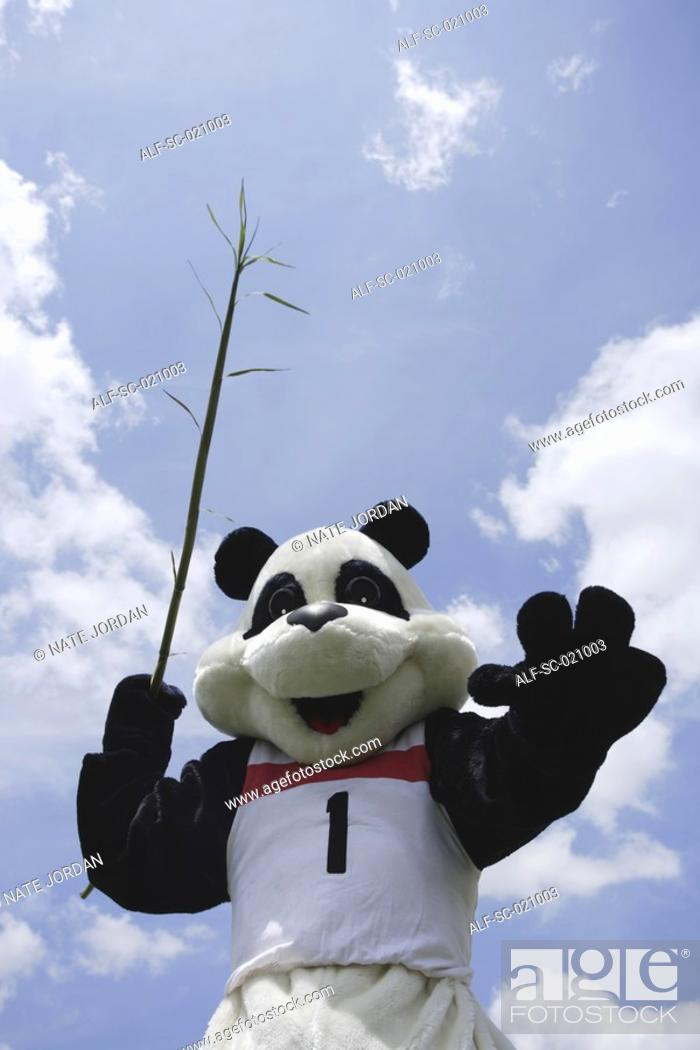 Stock Photo: Panda Throwing Javelin.