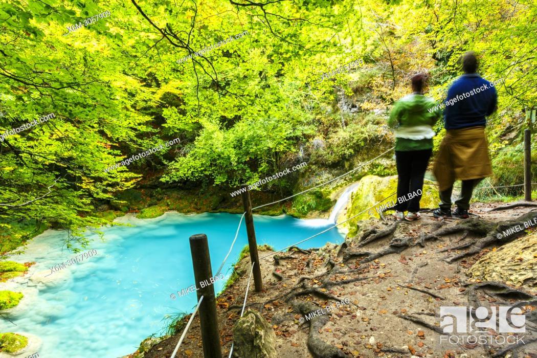 Stock Photo: Beechwood and Urederra river. Nacedero del Urederra Natural Reserve. Urbasa y Andia Natural Park. Navarre. Spain.