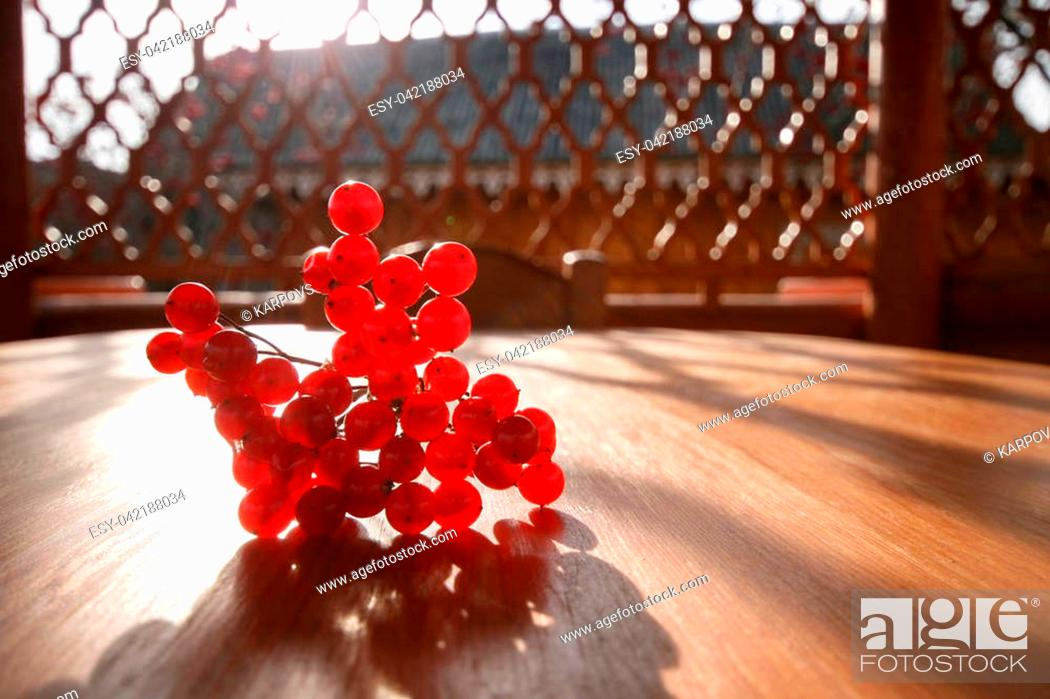 Stock Photo: A street arbor. A bunch of red mountain ash on a wooden table.