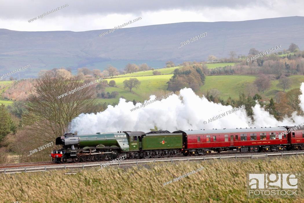 Stock Photo: Steam train LNER A3 Class 4-6-2 no 60103 Flying Scotsman. Lazonby, Eden Valley, Cumbria, Settle to Carlisle Railway Line, England, United Kingdom, Europe.