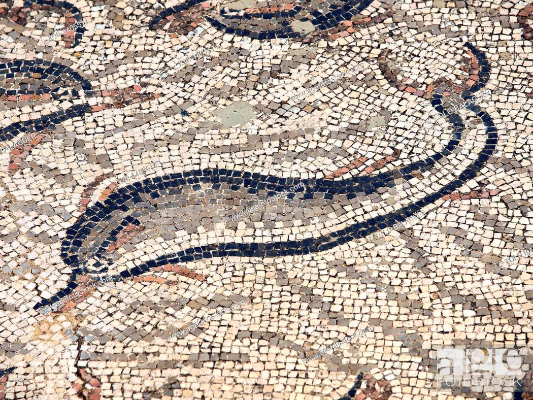 Stock Photo: Dolphins, mosaics of the House of Orpheus, Roman City of Volubilis, II bc, archeological site, Morocco.
