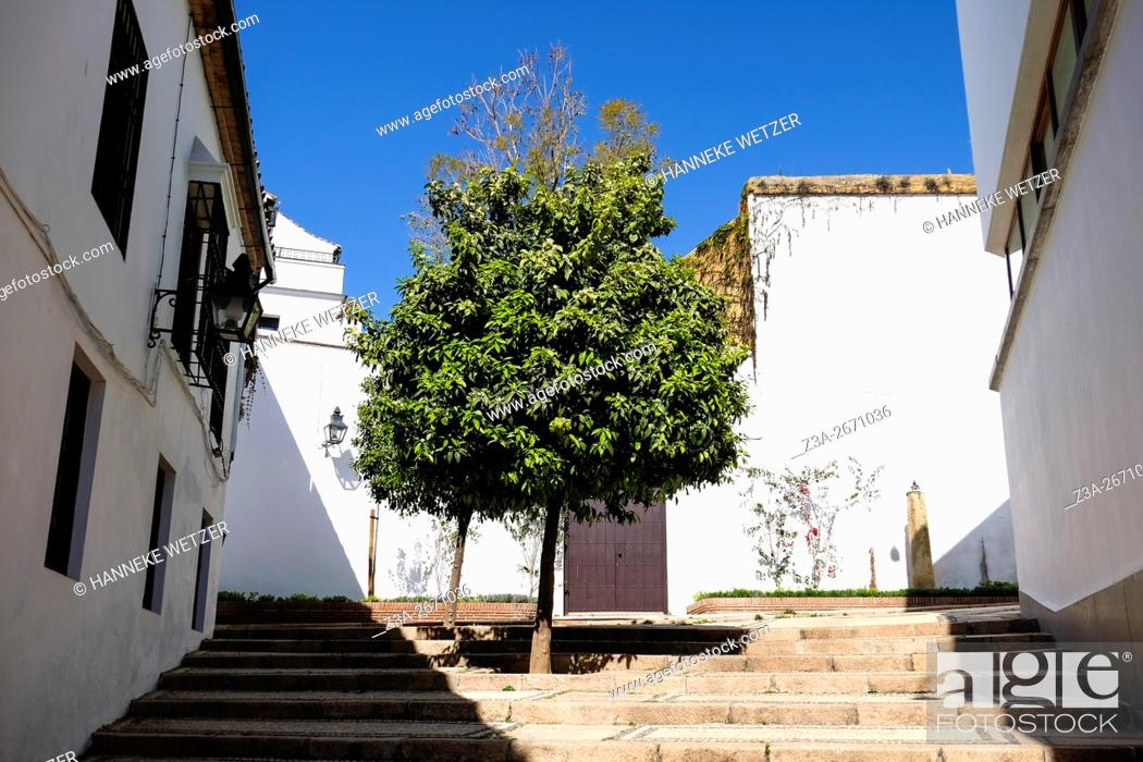 Stock Photo: Traditional housing in Cordoba, Spain, Europe.