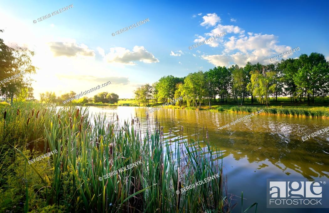 Stock Photo: Morning on a beautiful river in summer.