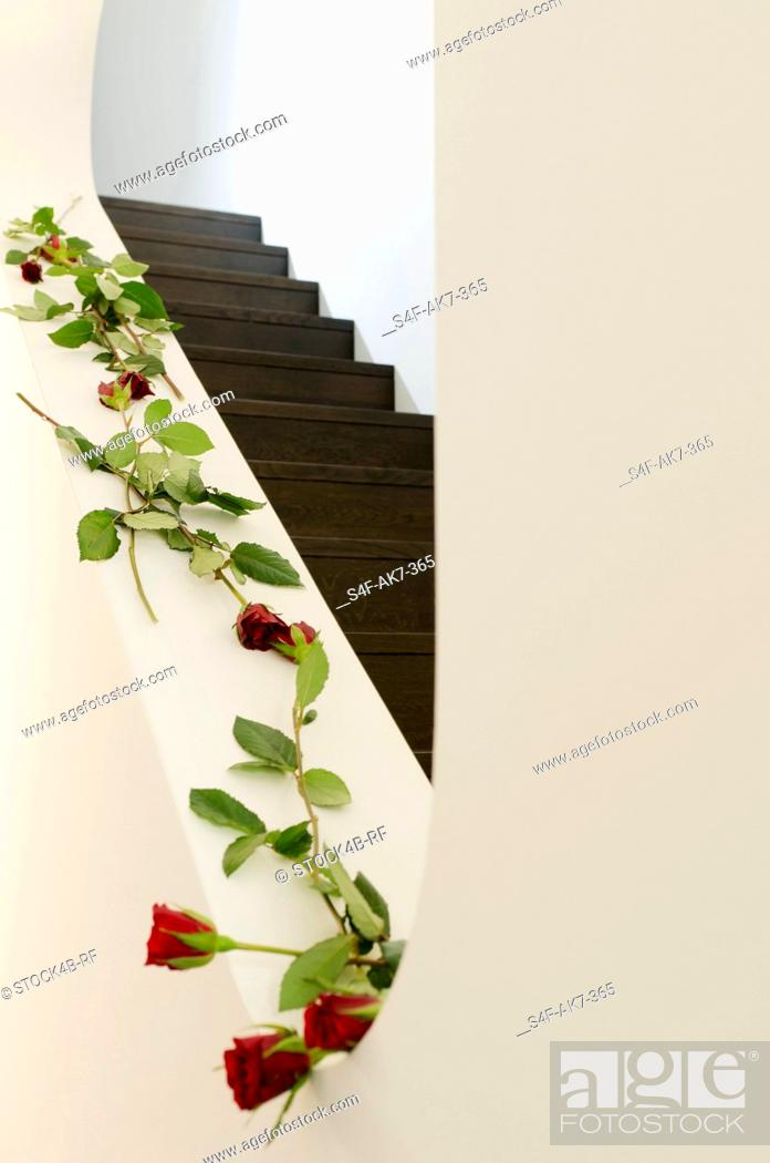 Stock Photo: Staircase decorated with red roses.