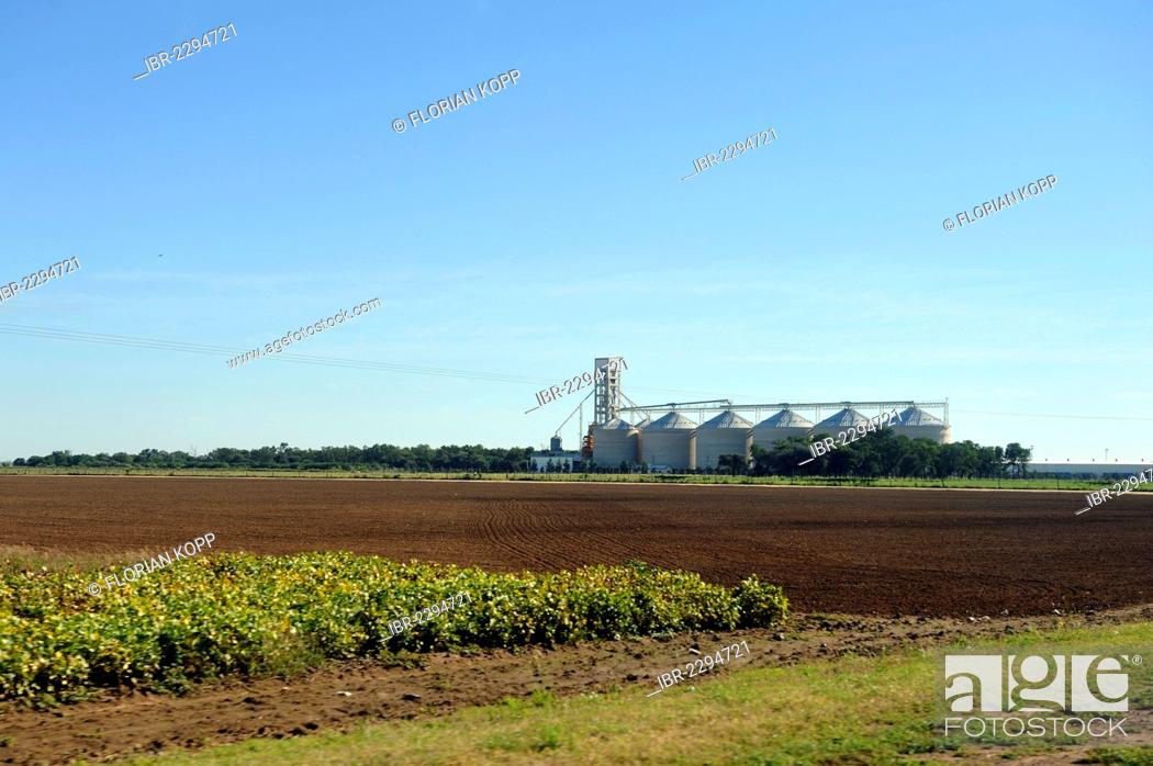 Stock Photo: Fields, plantations, soybean monoculture, grain silos used for soybean storage, Formosa province, Argentina, South America.