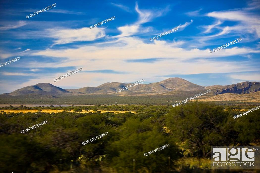 Stock Photo: Trees on a landscape with mountains in the background, San Luis Potosi, Mexico.