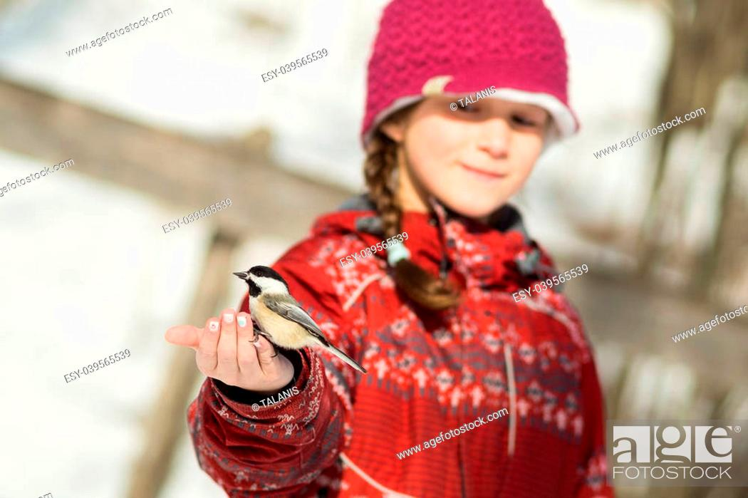 Imagen: Girl hand-feeding a black-caped chickadee.