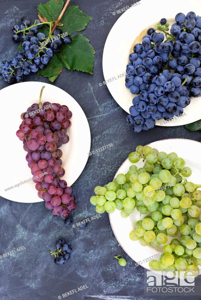 Imagen: Various types of grapes (top view).
