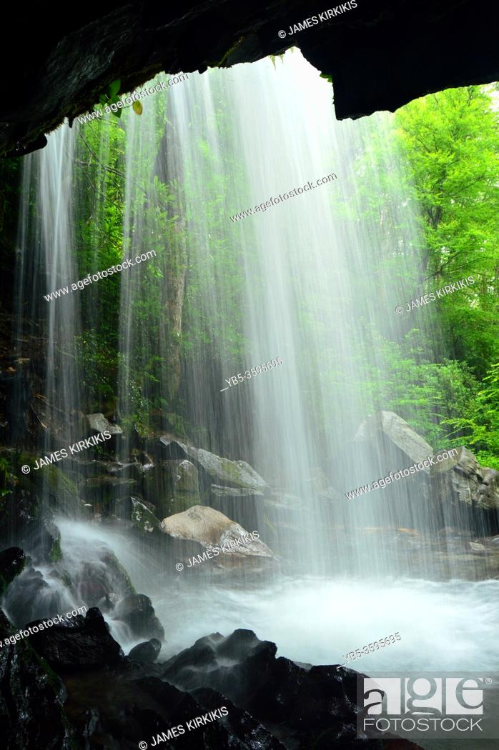 Stock Photo: A Grotto Falls flows over the edge of a ravine in the Great Smokey Mountains National Park.