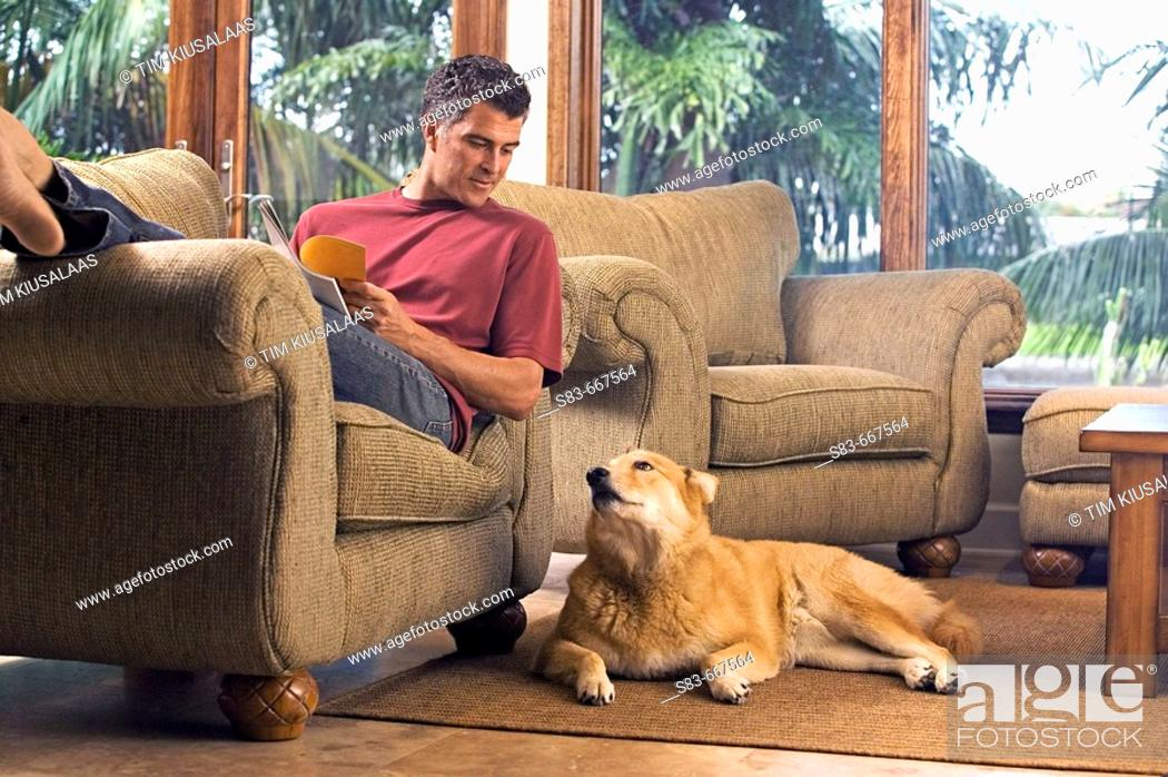 Stock Photo: Man reading on chair with dog on floor next to him.