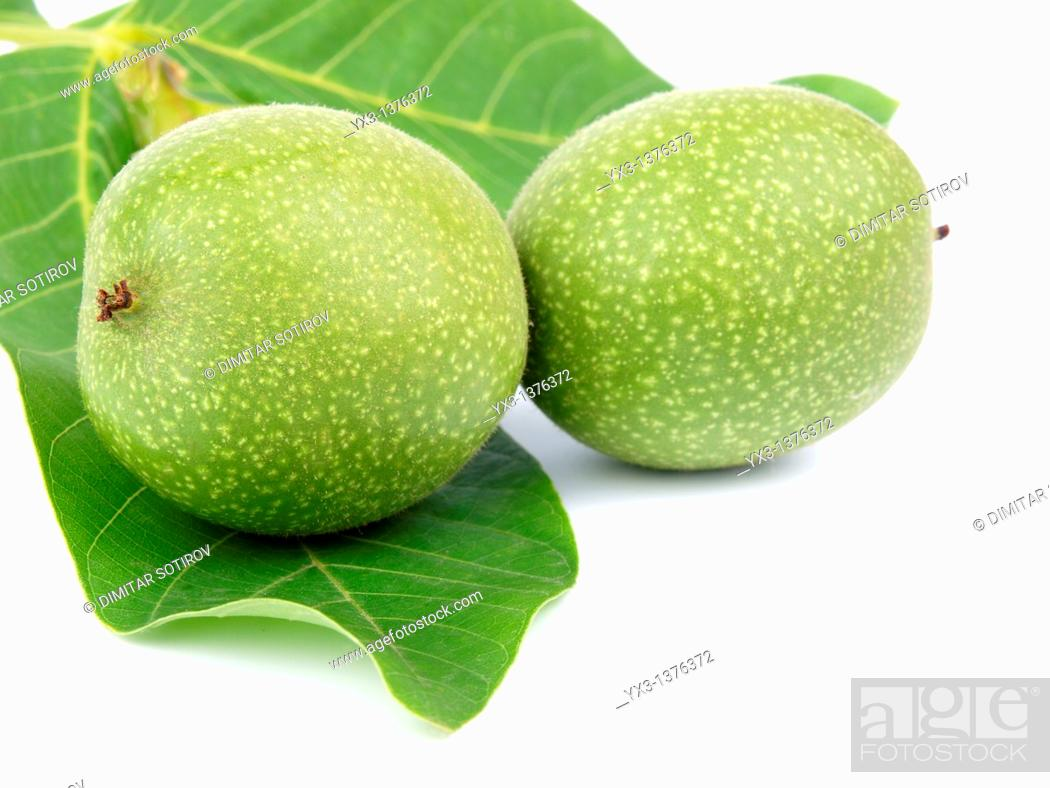 Stock Photo: Green walnuts isolated on white.