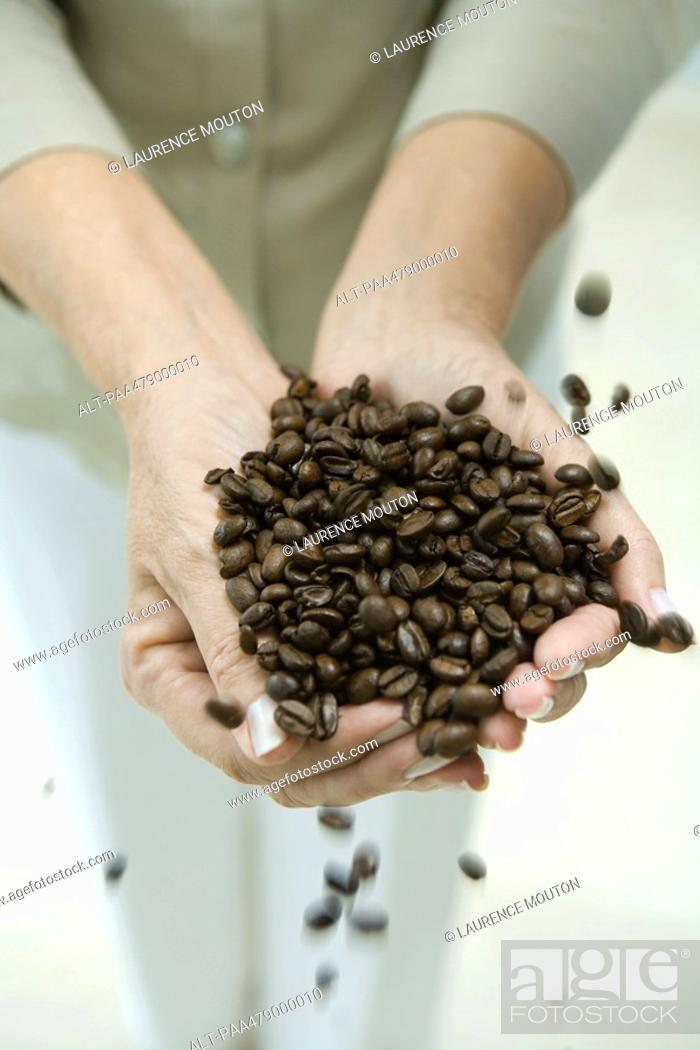 Stock Photo: Woman's hands holding coffee beans, cropped.