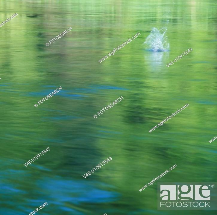 Stock Photo: Water.