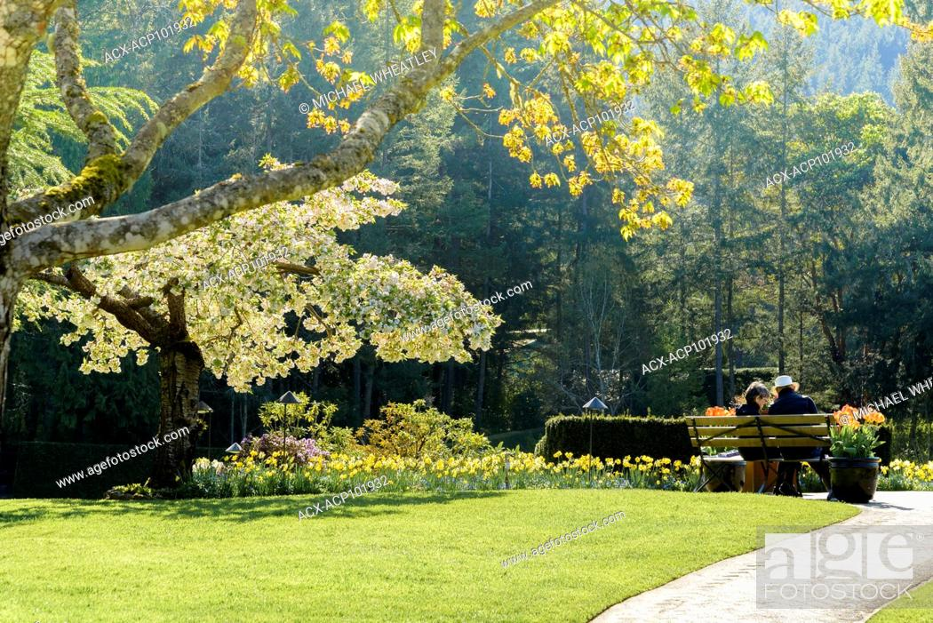 Stock Photo: Couple on bench, Butchart Gardens, Brentwood Bay, near Victoria, British Columbia, Canada.