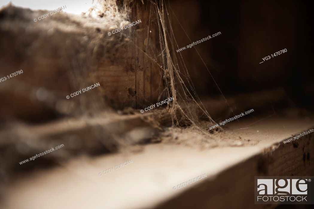 Stock Photo: Dusty cobwebs in derelict building.