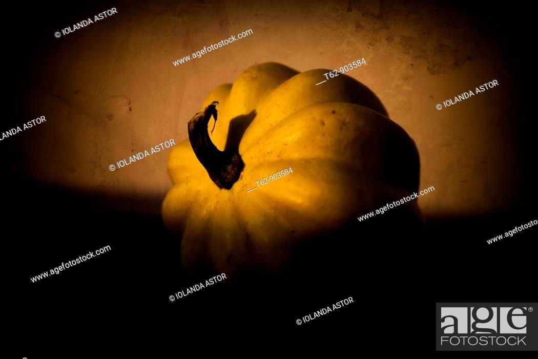 Stock Photo: Close-up of a pumpkin  Still Life  Color, Yellow.