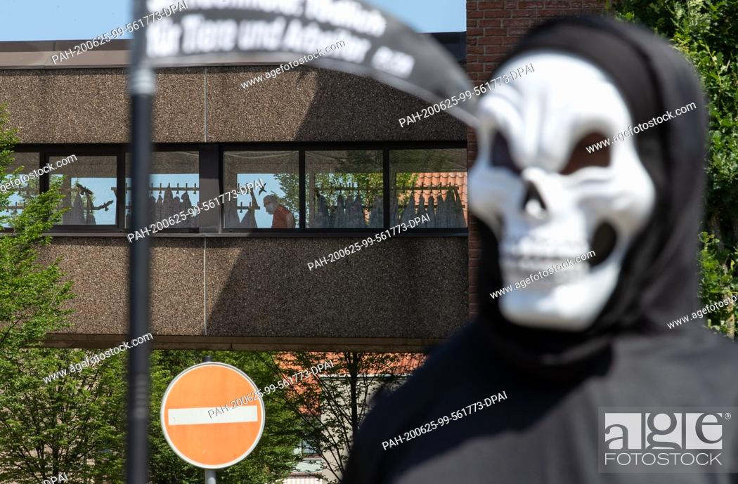 Stock Photo: 25 June 2020, Lower Saxony, Dissen: An activist of the animal protection organization Peta disguised as death stands in front of the building of the meat and.