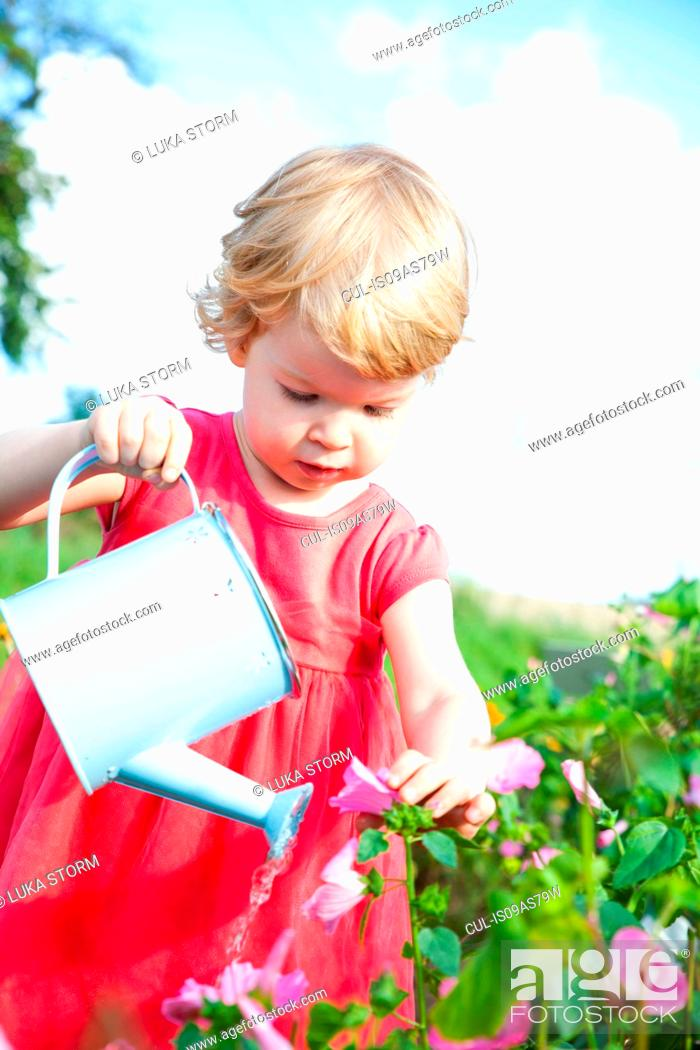 Stock Photo: Female toddler watering pink flowers in flower field.
