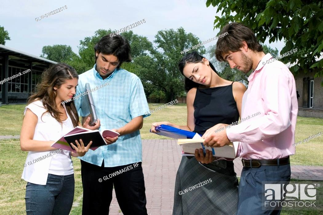 Stock Photo: Four university students standing and discussing in a lawn.