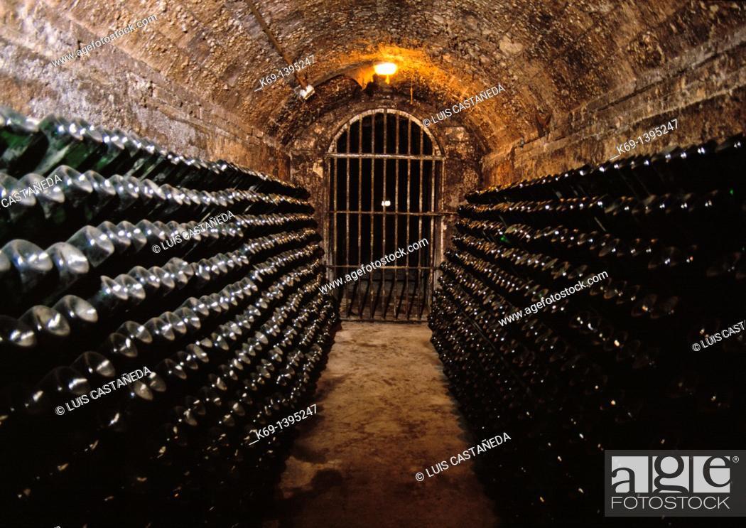 Stock Photo: Freixenet Cava Cellar  Sant sadurní D'anoia Barcelona Spain.
