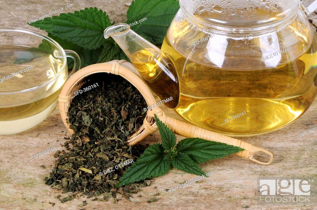 Stock Photo: Nettle tea.