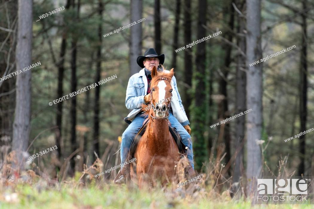 Imagen: A veteran cowboy riding his arabian horse in the forest.